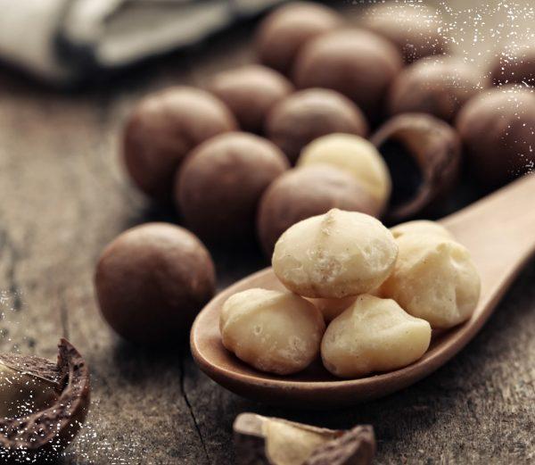 Verpackung mit gerösteten Macadamianüssen - Jetzt Macadamia kaufen